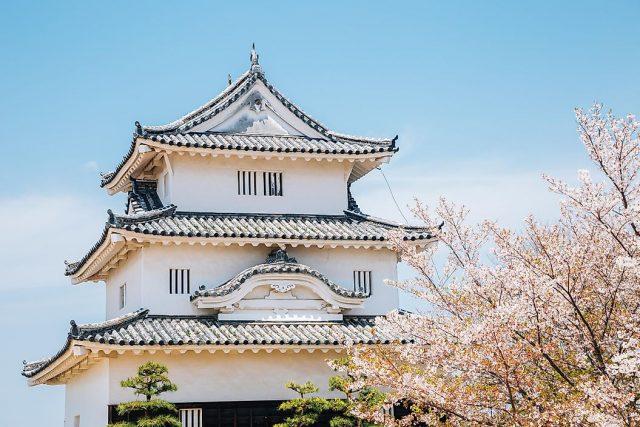Akrep Japonya