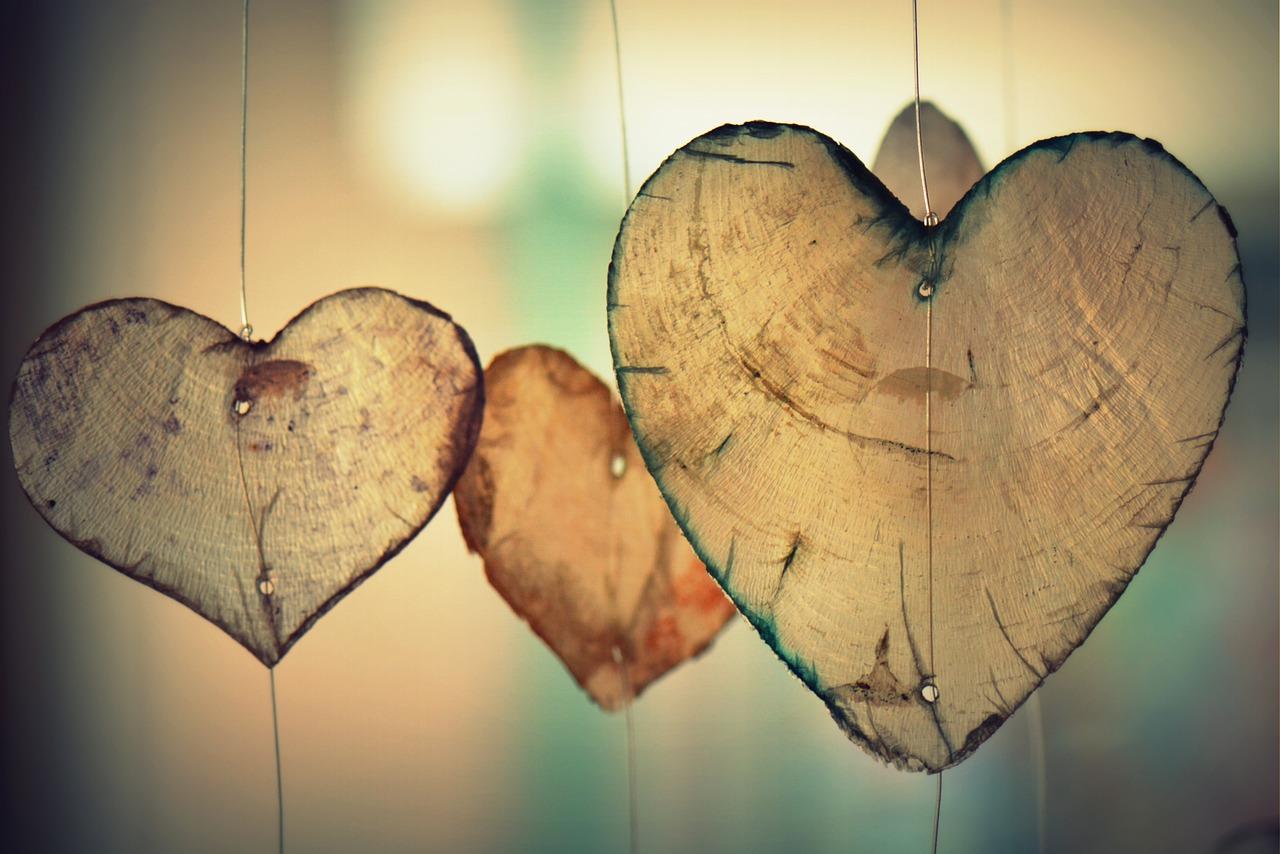 Elanie Hatfield'in tutkulu ve şefkatli aşkı