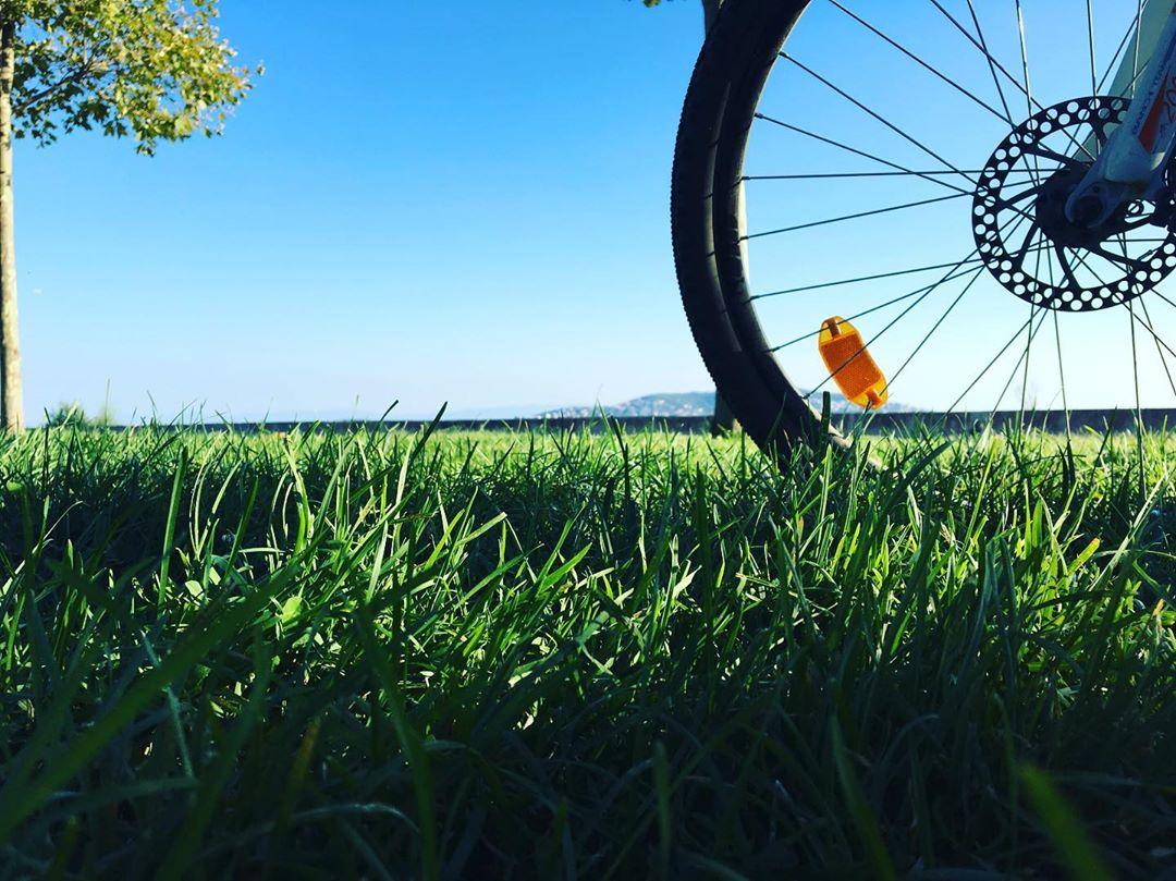 Bisiklet Tekerleği ve Manzara
