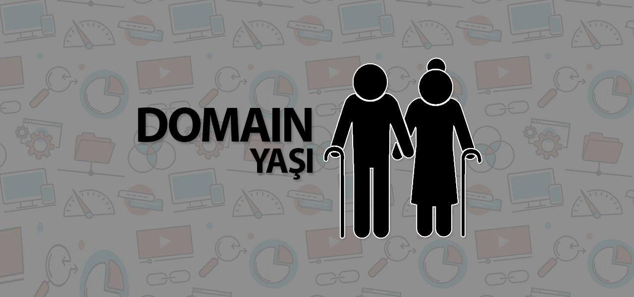 Domain Yaşının SEO'ya Etkileri Nelerdir