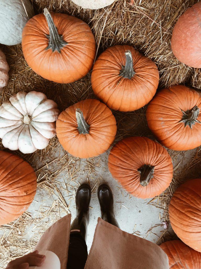Ekim Ayını Sevmemiz İçin 10 Neden