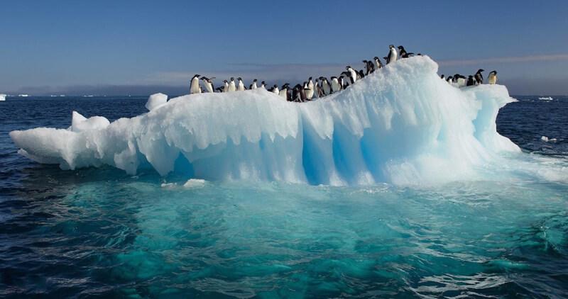 İçme Suları Antarktika'dan Gelecek