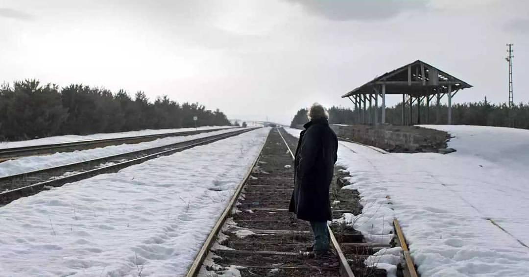 6) Kış Uykusu (2014)