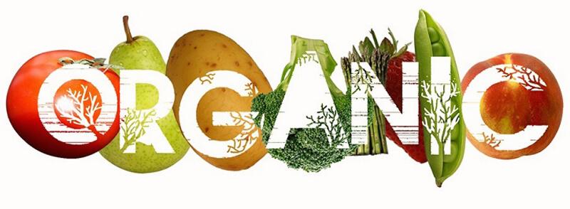Organik Ürün Nedir Neden Organik?