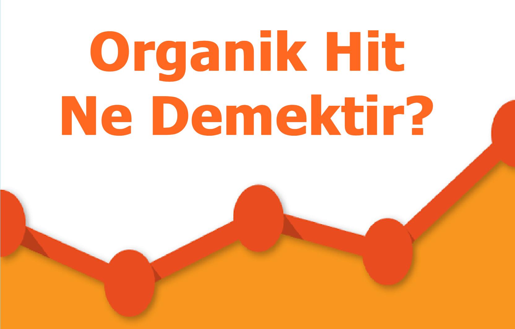 Organik Hit Nedir?